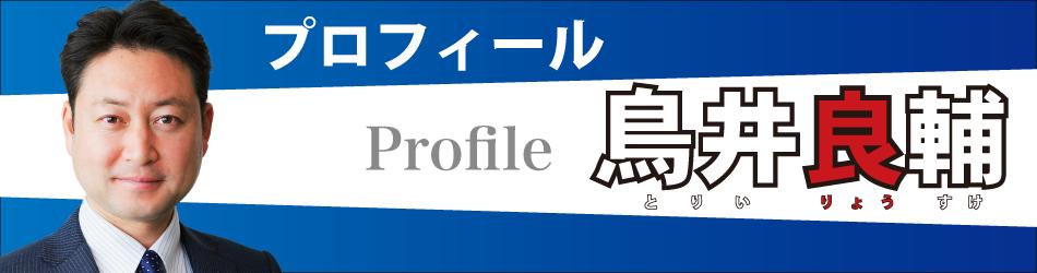 p-profile